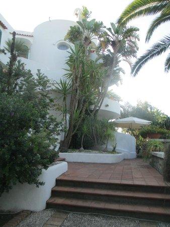 Paco Residence: отель
