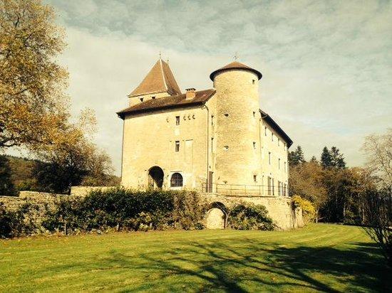 Chateau De Marigna: le château
