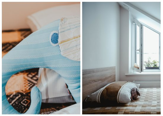 B&B Vilnius Home: elephants are waiting for you
