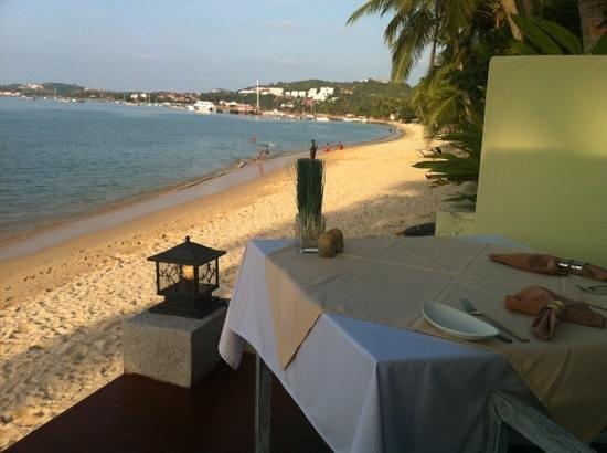 Ocean 11 : Lovely setting right on the beach
