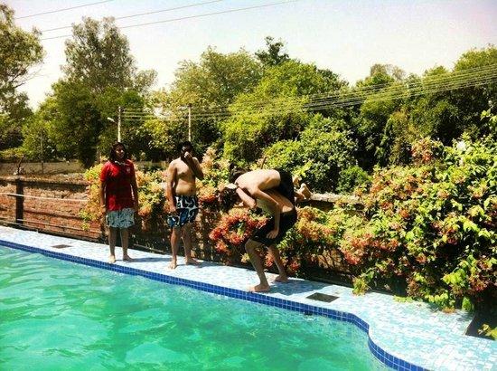 Mrs. Bhandari's Guesthouse : swimming pool