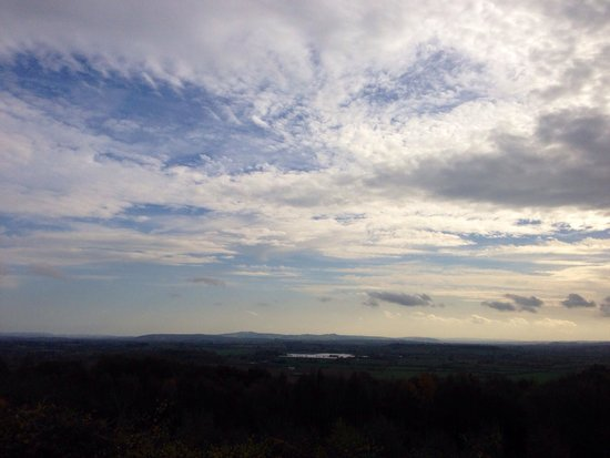 Queenswood Country Park: View from the lookout