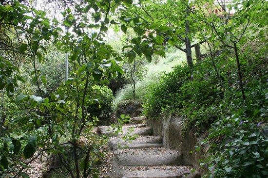 Santuario del Rio : Camino