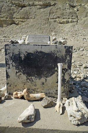 Olduvai Gorge Museum: Memorial monument