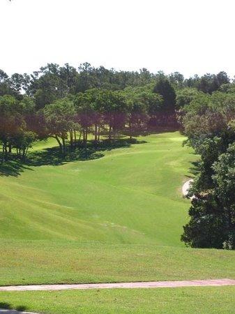 ColoVista Golf Club : #14