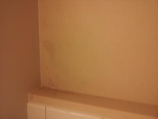 Racine Architect Hotel & Conference Center: Mold in bathroom