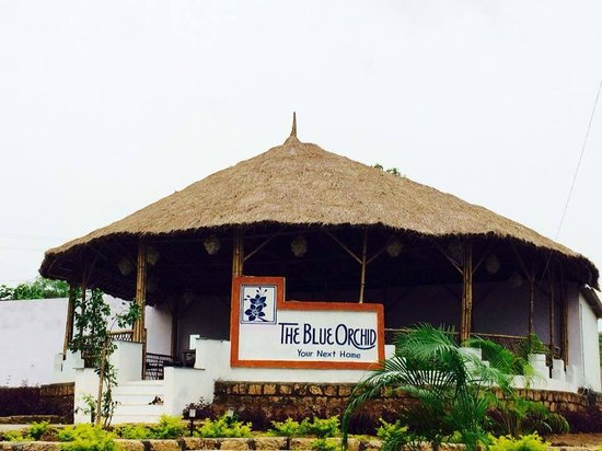 Restaurant Picture Of The Blue Orchid Resort Sasan Gir