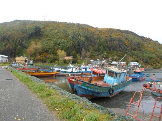 Los Lagos Region, Chile: Tenglo