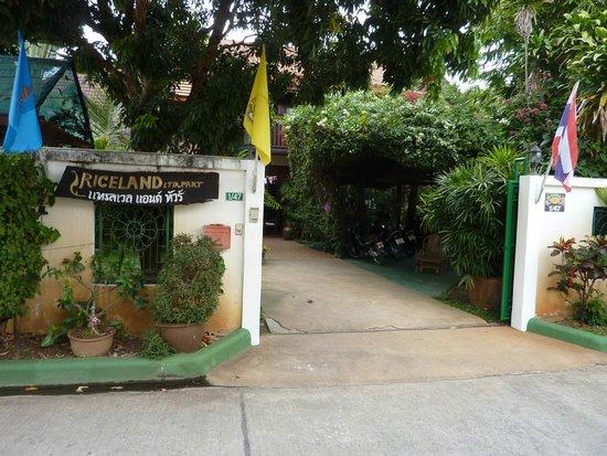 Golden Teak Home: Entry and garden