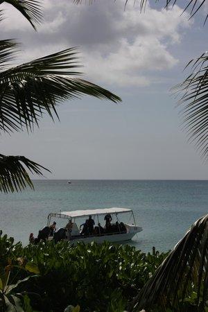 Dive Seychelles Underwater Center: Bateau du club