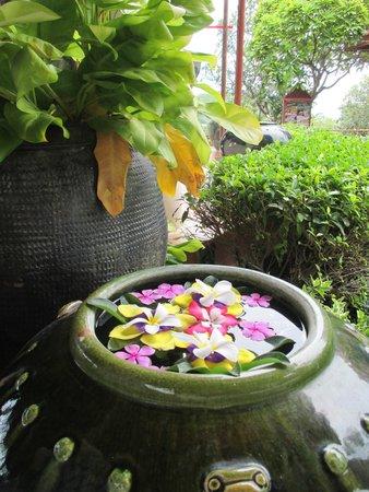 Q Signature Samui Beach Resort: Fresh flowers are everywhere - everyday