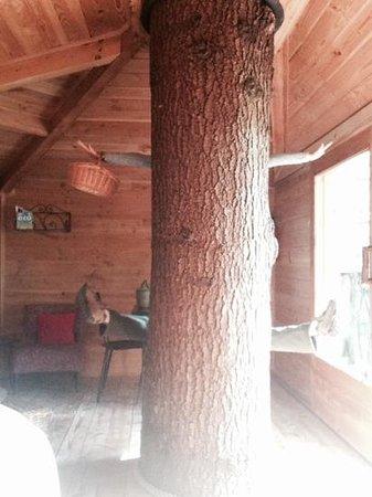 Cabanes als Arbres: arbre