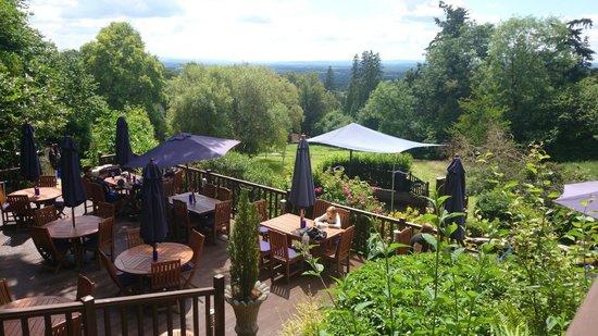 Restaurants Near Ewhurst Surrey