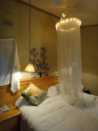 Old Joe's Kaia: one of our rooms