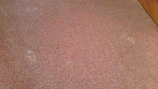 Hotel Monarque Torreblanca: stained smelly carpets