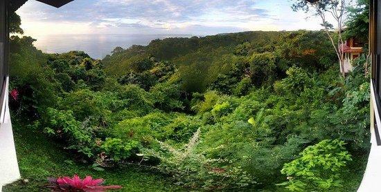 Anamaya Resort & Retreat Center: View from Ganesh Cabina