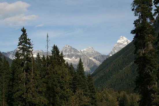 Glacier National Park of Canada, Canadá: View of Surrounding Hills (Rock Garden Trail)