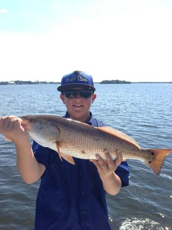 Fish the tampa bay inshore fishing charters tours for Tampa bay fish