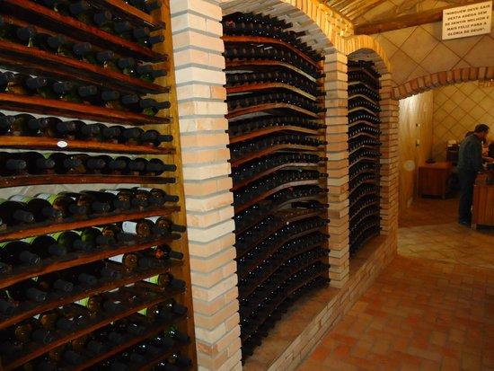d3a3efe02 Vinhos para compra - Foto de Adega Maziero
