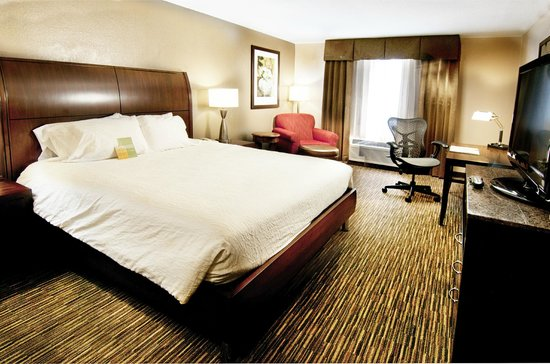 Hilton Garden Inn Sarasota - Bradenton Airport: King Room