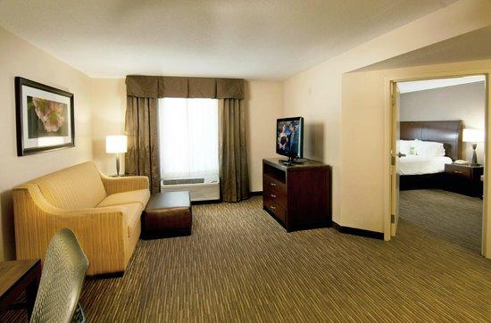 Hilton Garden Inn Sarasota - Bradenton Airport: King Suite