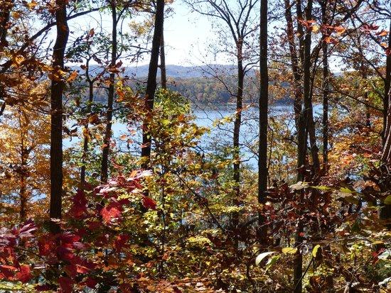 Cave Run Lake: Beautiful blue water