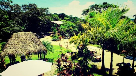 Bocas Island Lodge