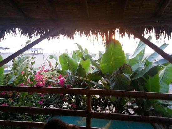 La Casa Hostel : Balcon
