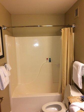 TownePlace Suites St. Louis Fenton: Shower