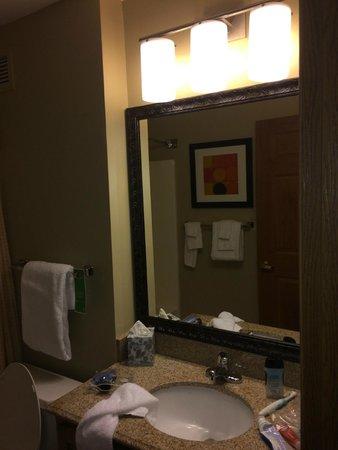 TownePlace Suites St. Louis Fenton: Bathroom