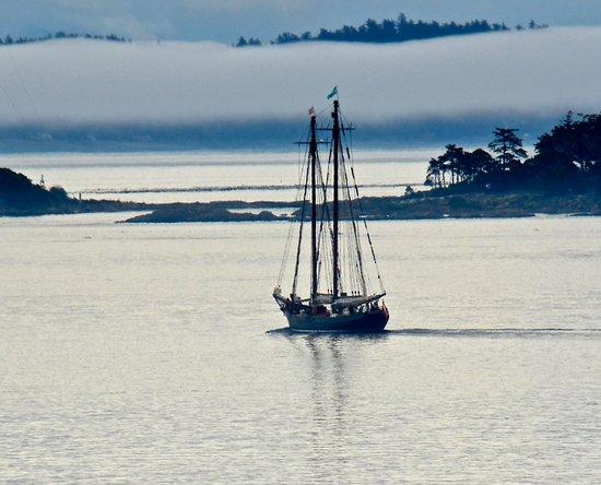 Oak Bay Beach Hotel : A wooden two-masted schooner sails through Oak Bay