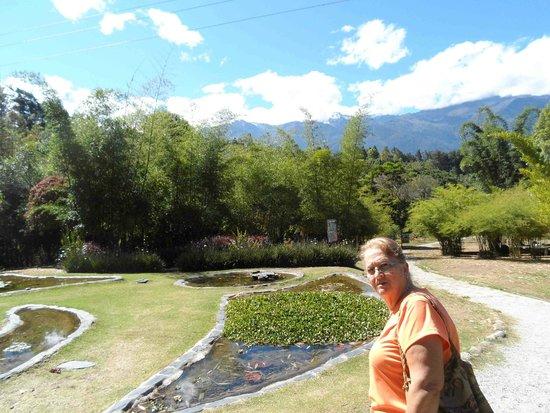Jardin Botanico de Merida: Ingresando al Jardín