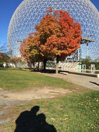 Jardin des floralies floralie garden picture of parc for Au jardin de fanny montreal