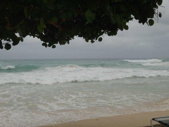 Sebastian's on the Beach: HC Gonzalo Waves at Sebastian's Beach Front