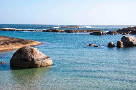 Greens Pool : Elephant rock 3