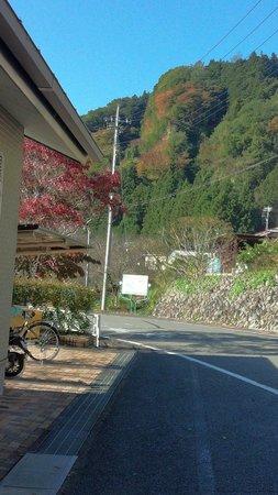 Mizunumaeki Onsen Center: 水沼温泉近くの紅葉(まだ少し早かったです)