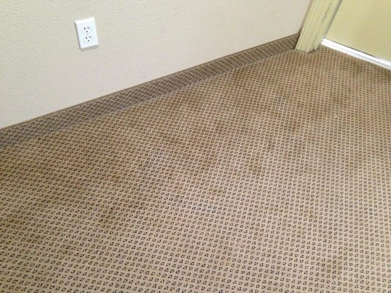 Holiday Inn Express Hotel & Suites Galveston West - Seawall: Carpet stains