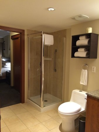 Embassy Suites by Hilton Montreal: Super SMALL standing shower