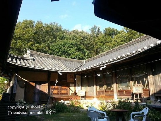 Ogamul Guesthouse: Ogamul - front yard