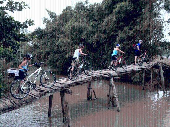 Vietnam Bike Adventures - Day Tours
