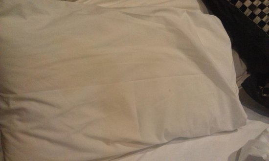 Comfort Inn Greensborough: Stained slept on pillow at Comfprt Inn Greensborough