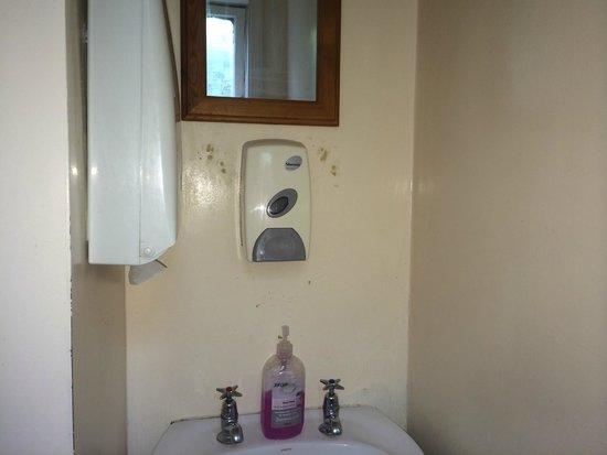 Fig Tree Cafe Upper Hutt: Grubby bathroom