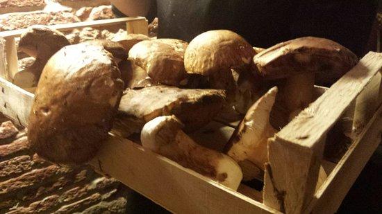 Ristorante Modus Bibendi: Cassetta di funghi