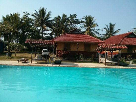 swimming pool, back of our bungalow
