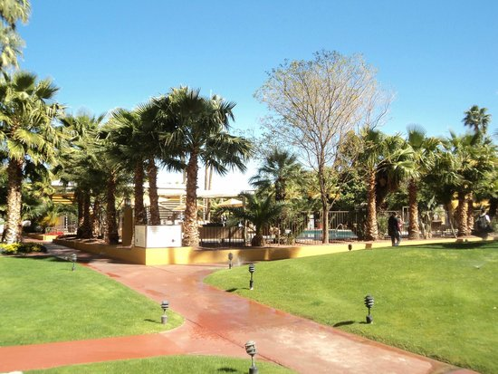Doubletree by Hilton Tucson - Reid Park: espaces vert