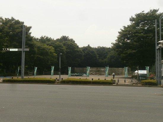 Shinjuku Chuo Park : Park