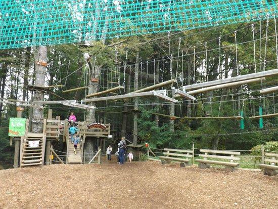 Signal de Bougy Pre Vert Park : tiny tots start