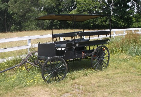 Ed's Buggy Rides: Amish vehicule.