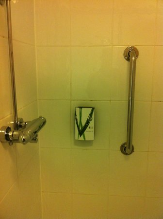 Premier Inn Pontypool Hotel: Shower