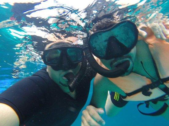 Sun Catamaran - Day Tours : سنوركل